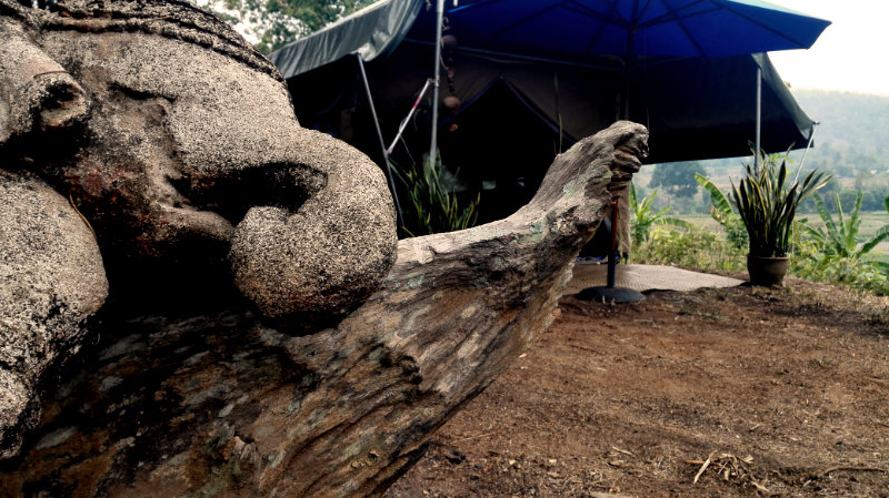 Elephant Special Tours - Luxury Tent 5