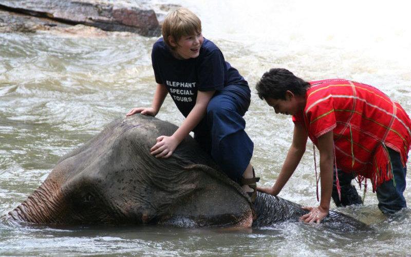 Elefantenbaden Thailand Chiang Mai