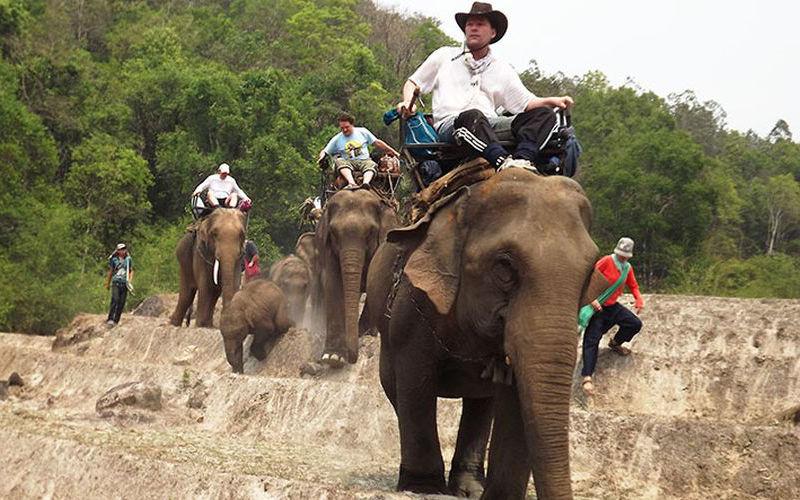 Elephants-trek2