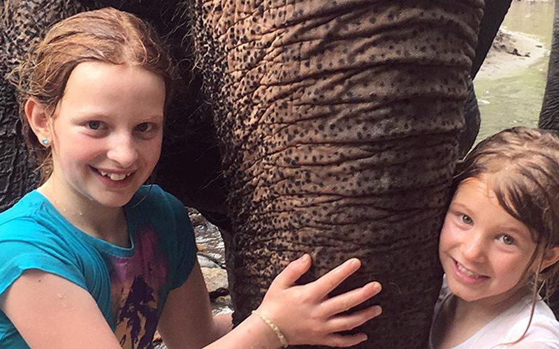 Elephant Special Tours - Familien